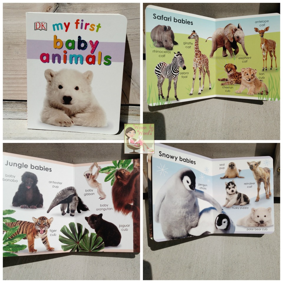the social animal free ebook download