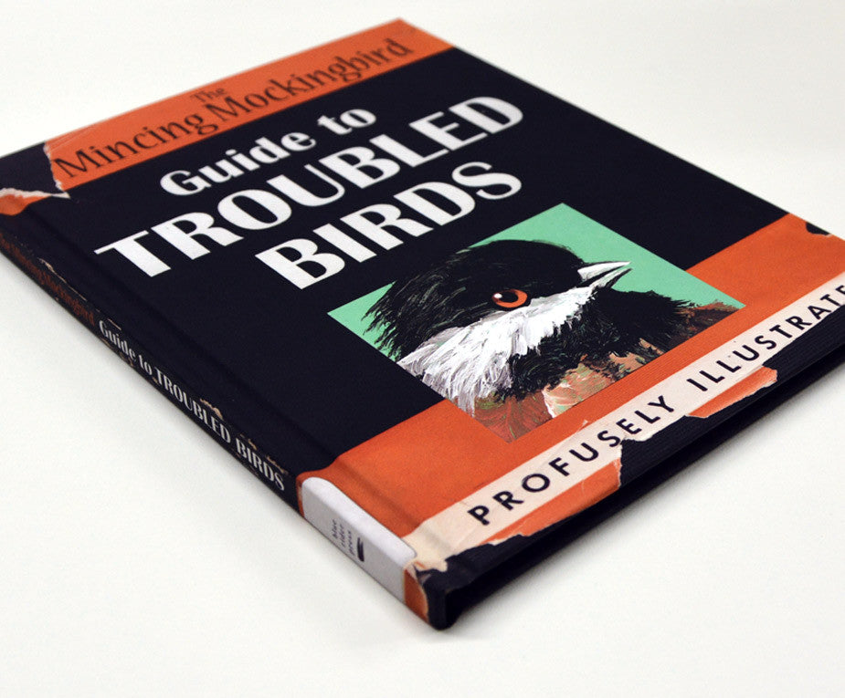 guide to troubled birds ebook