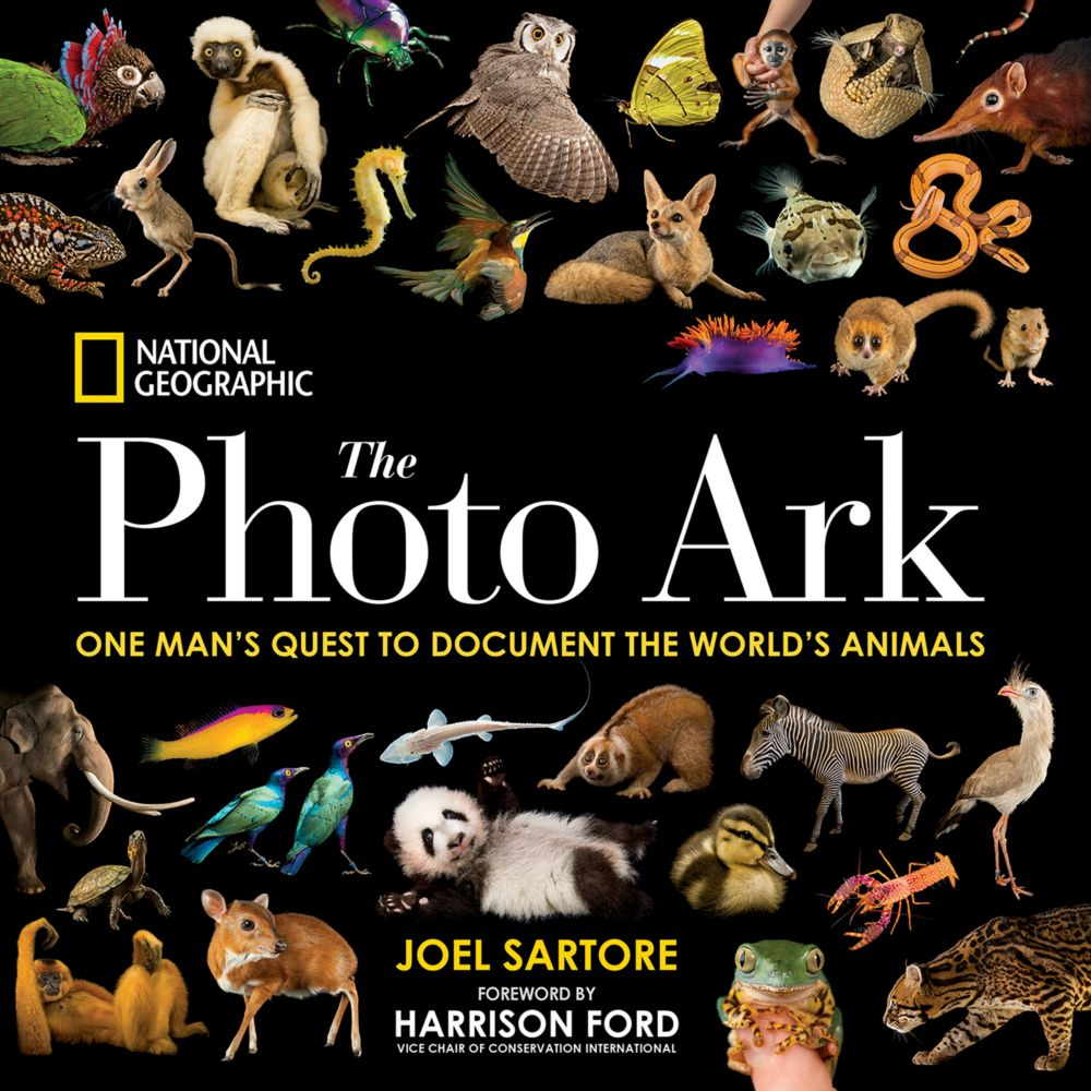 national geographic complete photography ebook
